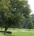 Municipal Golf Course.jpg