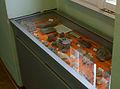 Museum der Stadt Steyr - Minerale aus Oberösterreich.jpg