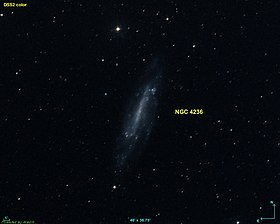 Image illustrative de l'article NGC 4236