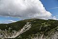 NP Kalkalpen Hoher Nock Gipfelplateau.jpg