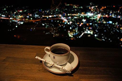 Nagasaki City view from Mt Inasa09bs