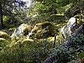 Nature by Birgitan Polku - panoramio.jpg