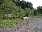 Nebenbahn Wennemen-Finnentrop (5829745024).jpg