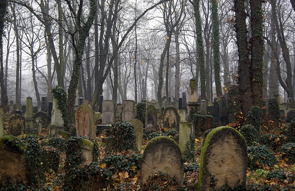 https://upload.wikimedia.org/wikipedia/commons/thumb/c/c9/New_Jewish_Cemetery,_55_Miodowa_street,_Kazimierz,_Krakow,_Poland.jpg/1024px-New_Jewish_Cemetery,_55_Miodowa_street,_Kazimierz,_Krakow,_Poland.jpg