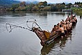 New Zealand - Maori rowing - 8527.jpg