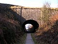 Newhaven Tunnel - geograph.org.uk - 124040.jpg