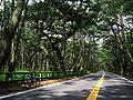 Niji no Matsubara.jpg