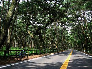https://upload.wikimedia.org/wikipedia/commons/thumb/c/c9/Niji_no_Matsubara.jpg/300px-Niji_no_Matsubara.jpg