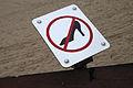 No Heels (8501378587).jpg