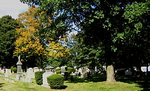 Temple Ohabei Shalom Cemetery - View of cemetery with trees