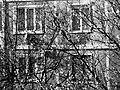 Okna budynków. - panoramio.jpg