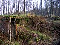 Old Finnish pill-box - panoramio - Andrey Belyaev.jpg