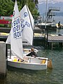 Optimisto sur lago de Thun 2.jpg