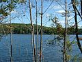 Otis-Benton Pond.JPG