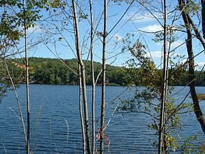 Otis, Massachusetts - Benton Pond, East Otis