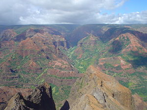 Montane ecosystems - Waimea Canyon, Hawaii is known for its montane vegetation.