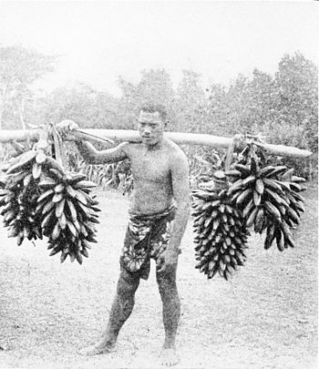 PSM V86 D122 Tahitian carrying plantain.jpg