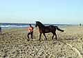 Paardtraining op strand 2.jpg