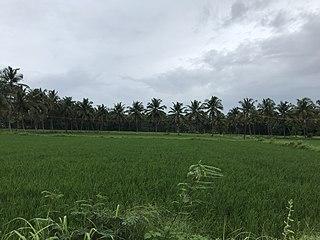 Yakkara Village Locality in Kerala, India