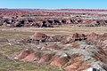 Painted Desert (19 of 29) (49040821661).jpg