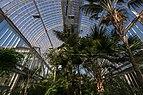 Palmhuset September 2015 03.jpg