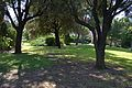 Parc - Benicalap.JPG