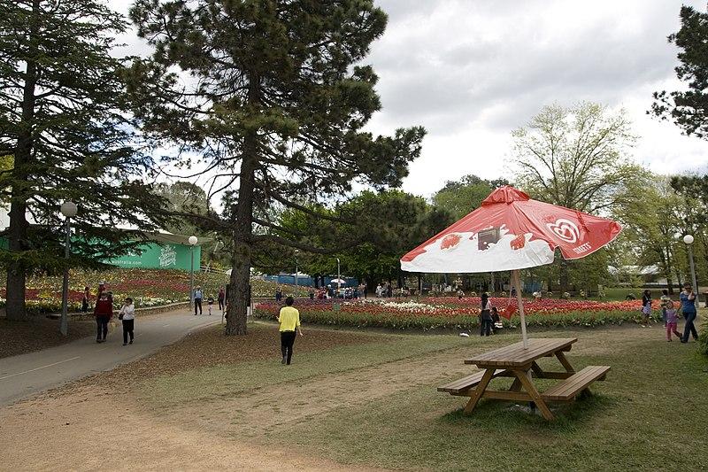 File:Parkes ACT 2600, Australia - panoramio (28).jpg