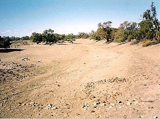 Paroo River - Image: Paroo River Dry 2002 05