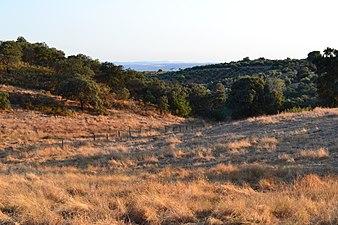 Parque natural de la Sierra de Cardeña y Montoro.JPG