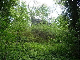 Blaenllynfi Castle