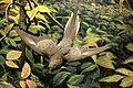 Passenger Pigeon in flight.jpg