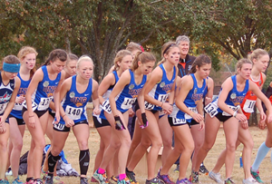 North Georgia Nighthawks - Women's Cross Country