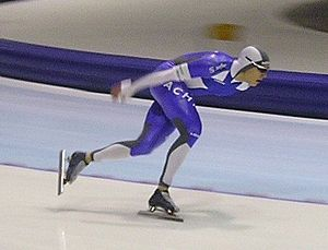 Pekka Koskela - Image: Pekka Koskela (2006)