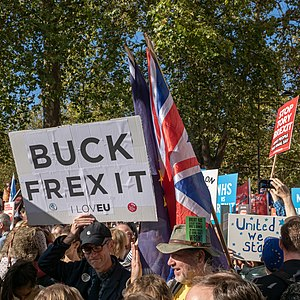 People's Vote March 2018-10-20 - BUCK FREXIT I LOVEU.jpg