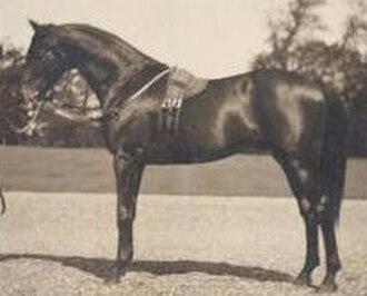 Persimmon (horse) - Image: Persimmon 1893