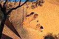 Petermann Ranges (AU), Uluru-Kata Tjuta National Park, Uluru, Kuniya Walk -- 2019 -- 3651.jpg