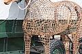 Pferd auf Juist 2010 PD 06.JPG
