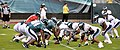 Philadelphia Eagles 2009 summer scrimmage - McNabb in as QB.jpg