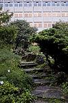 Plantentuin 2010PM 1076 21H8862.JPG