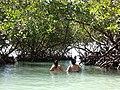 Playa Manglillo - panoramio (1).jpg