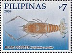 Polycheles coccifer 2009 stamp of the Philippines.jpg