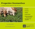 Progardes Desmanthus.png