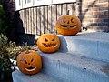Pumpkin Trio (5210971570).jpg
