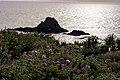 Punta Falcone 016.jpg