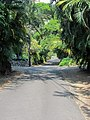 Puuhonua Rd, Captain Cook (504645) (24019270112).jpg