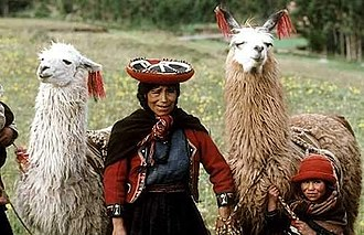 High-altitude adaptation in humans - Quechua woman with llamas