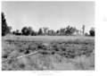 Queensland State Archives 5304 Spray irrigation Charleville District January 1955.png