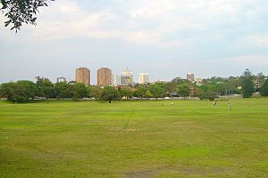 Queens Park, New South Wales - Queens Park, view towards Bondi Junction