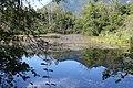 Réserve naturelle Marais Lavours Aignoz Ceyzérieu 120.jpg
