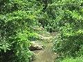 Río Indio, Morovis Norte, Morovis, Puerto Rico.jpg